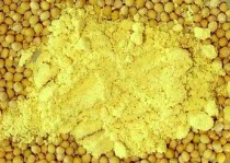 Mustard powder should always be mixed with cold water before adding to vinegar to avoid killing the flavor enzymes