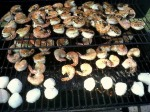 Shrimp & Scallops anyone?